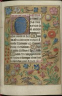 Book of Hours, f.14r