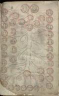 Forduni Scotichronicon, 1510, f.345r