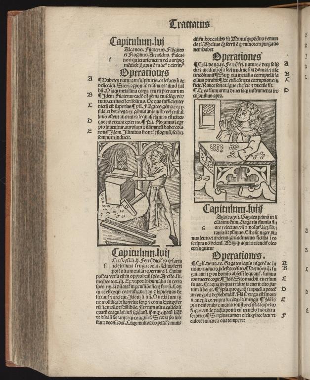 Hortus sanitatis, Fol.310 verso