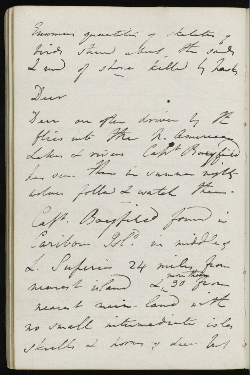 Notebook No. 4, p.84