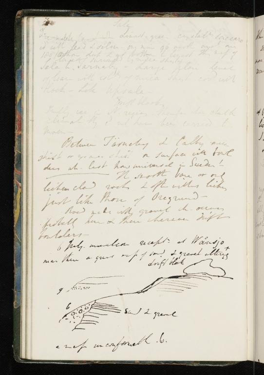 Notebook No.55 - Lyell, Charles (Sir) -p.54