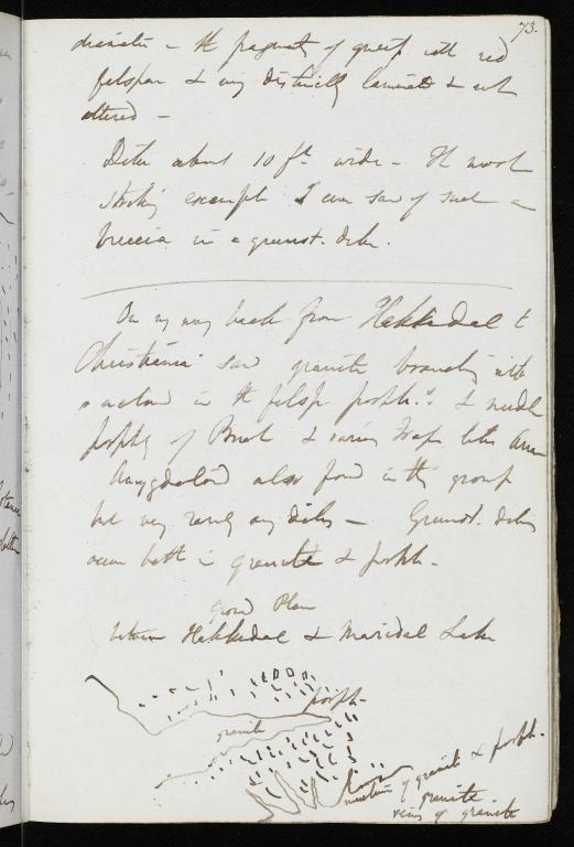 Notebook No.66 - Lyell, Charles (Sir) - p.73