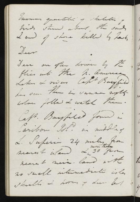 Notebook No.4, Lyell, Charles (Sir) - page p.84