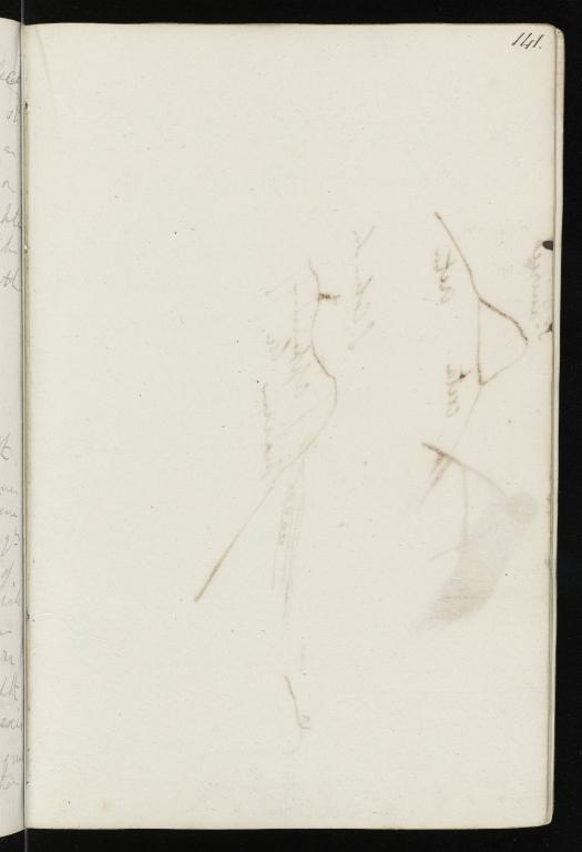 Notebook No.22, Lyell, Charles (Sir) - page p.141