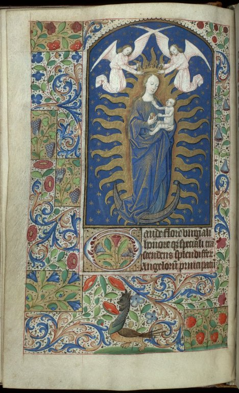 f. 25v. Click to see more digitised pages.