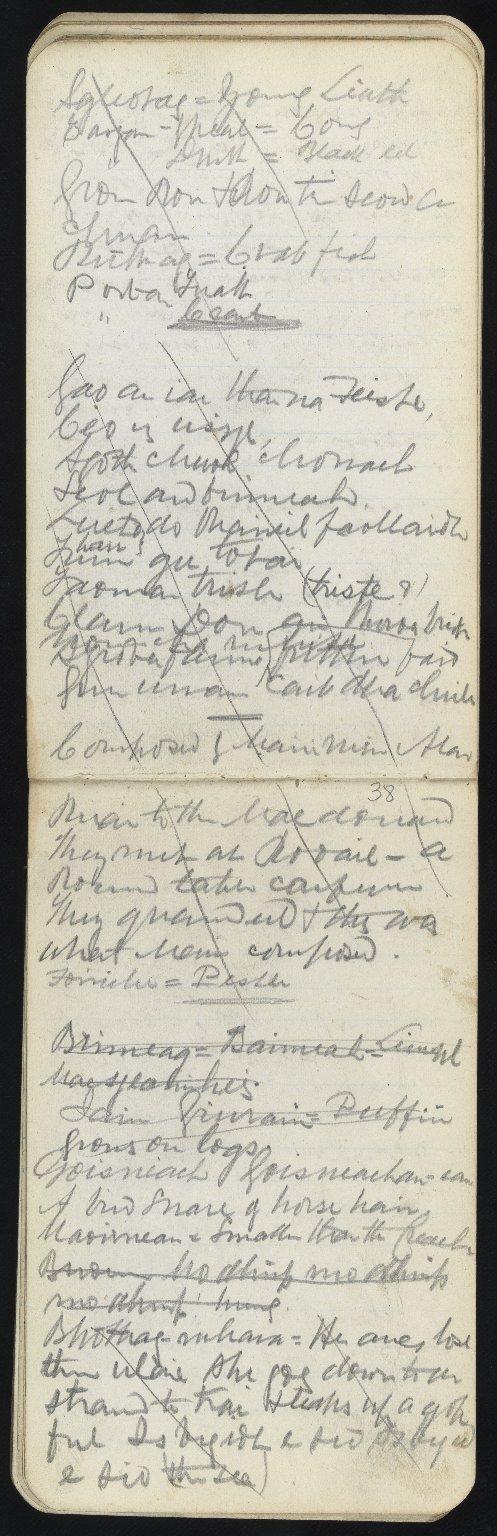 Field Notebook, ff.37v-38r