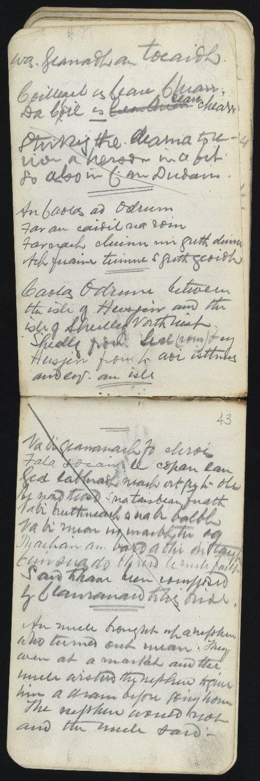 Field Notebook, ff.42v-43r