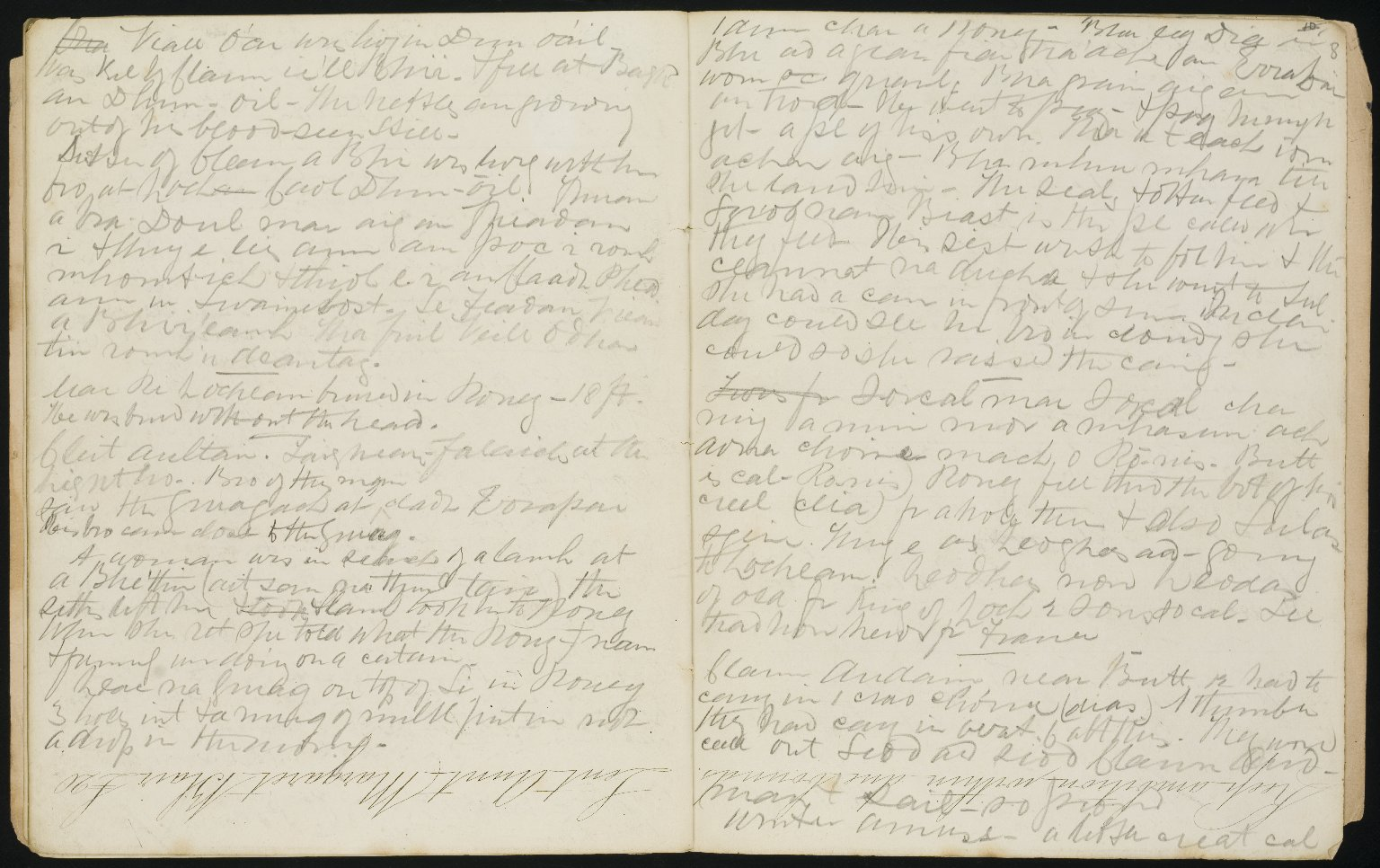 Field Notebook, Record of a Visit to Lewis, ff.7v-8r