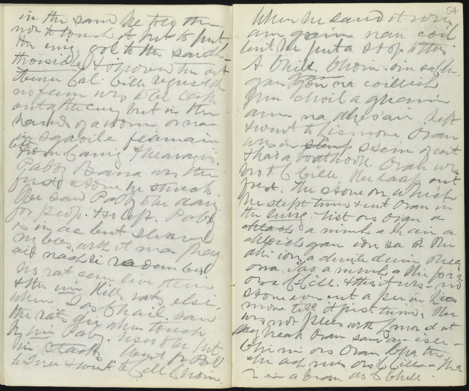 Field Notebook, ff.53v-54r