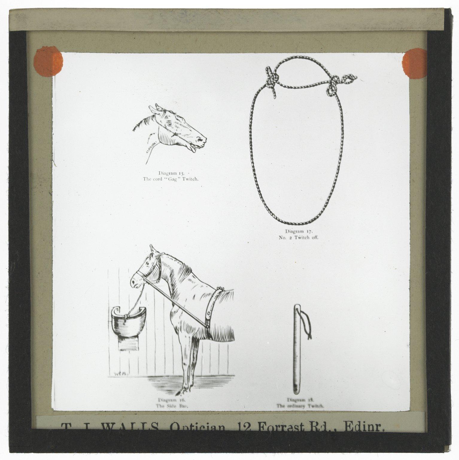Roslin Glass Slides, No. 2307