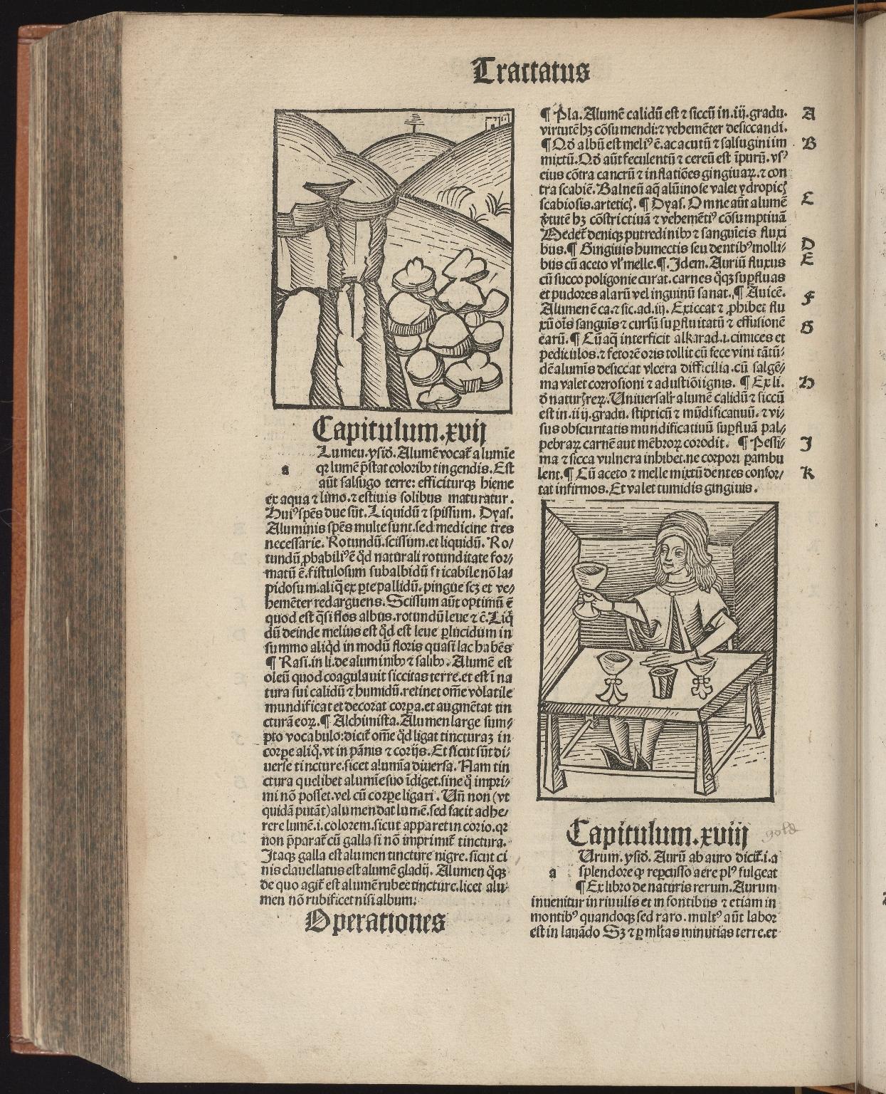 Hortus sanitatis, Fol.301 verso
