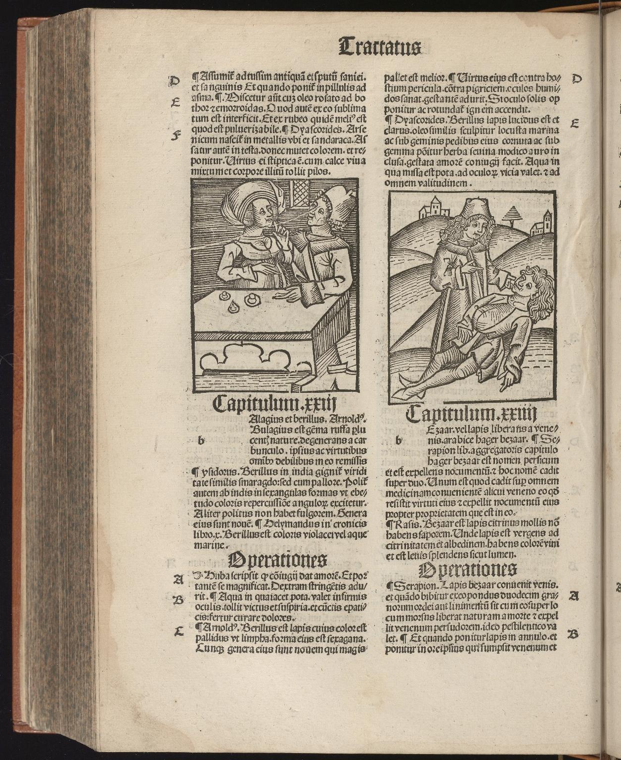 Hortus sanitatis, Fol.303 verso
