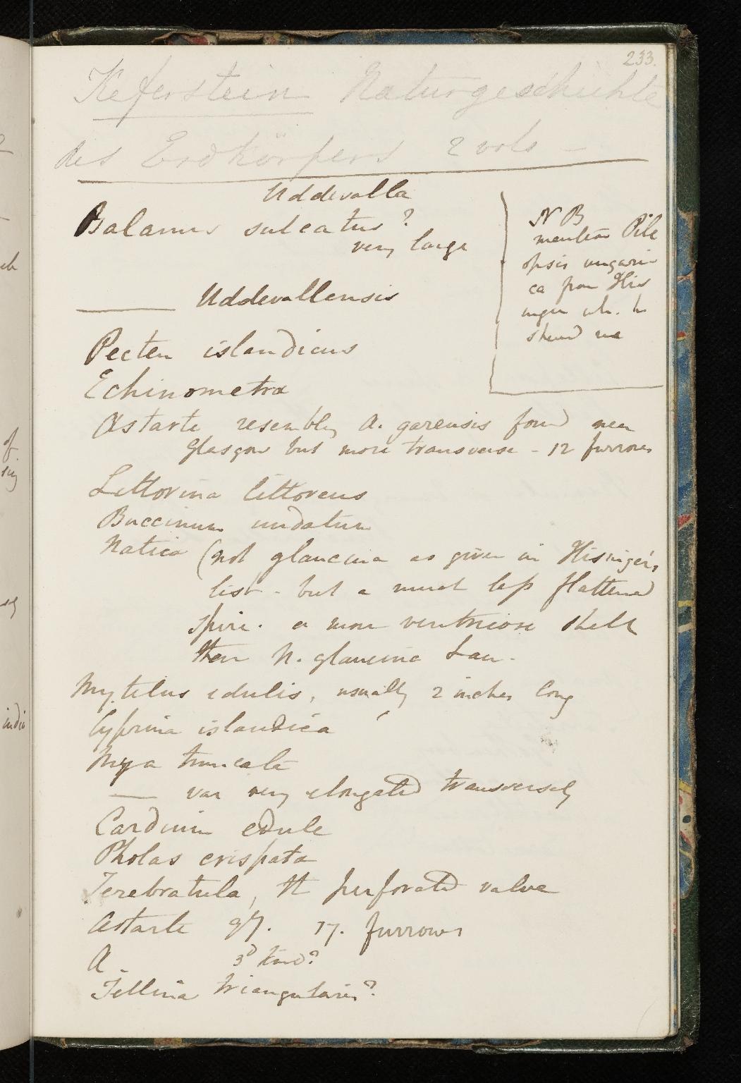 Notebook No.55 - Lyell, Charles (Sir) -p.233
