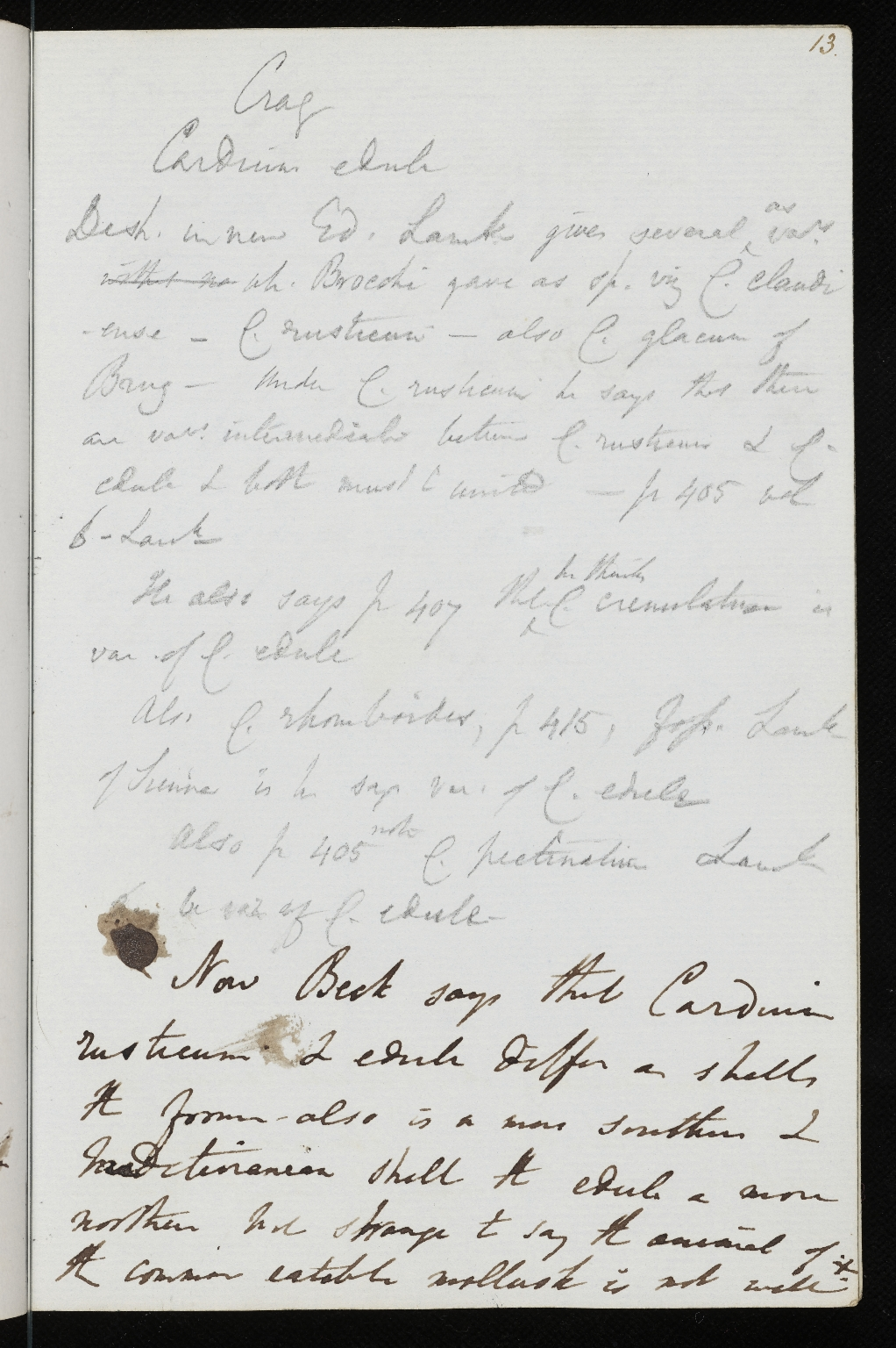 Notebook No.67 - Lyell, Charles (Sir) - p.13