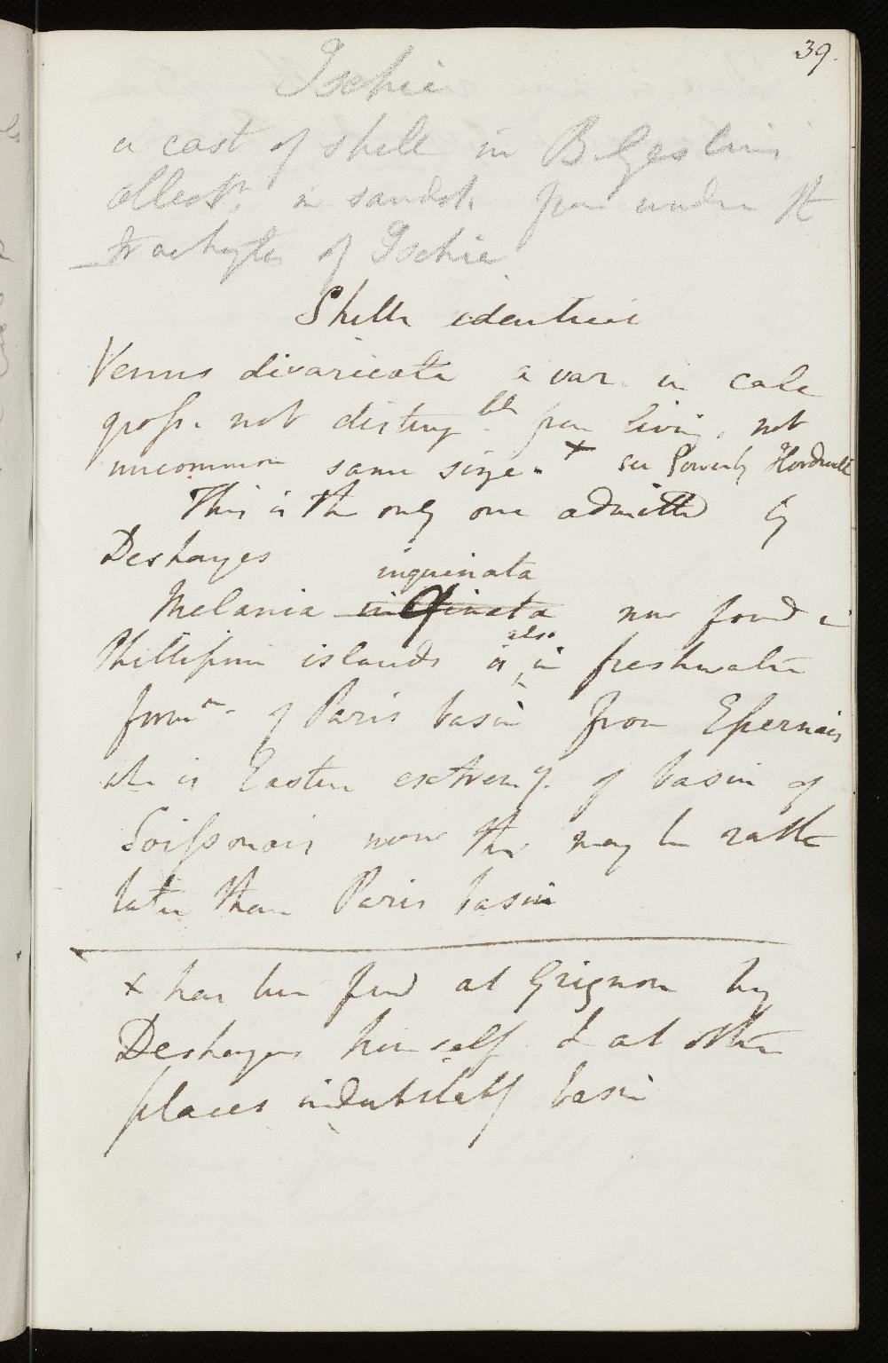 Notebook No.23, Lyell, (Sir) Charles - page p.39