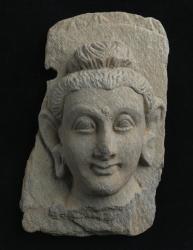 Gandharan sculpture fragments: Head of Buddha